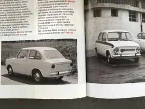 Fiat Abarth 1000 OT Grille (1)